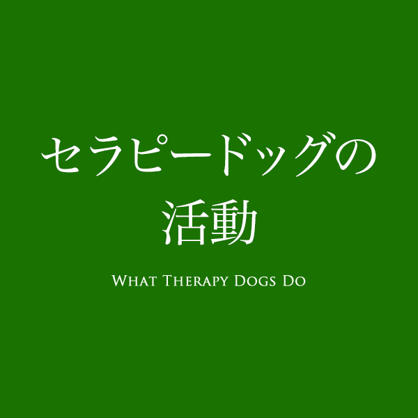 What Therapy Dogs Do