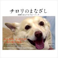 img_book02