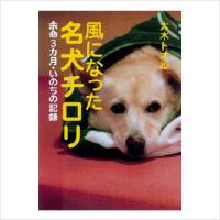 img_book04