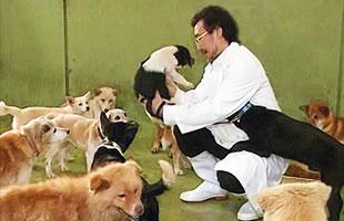 捨て犬の救助